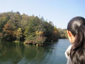 2011-11-28.jpg