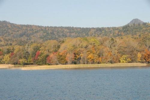 2011-11-8.jpg